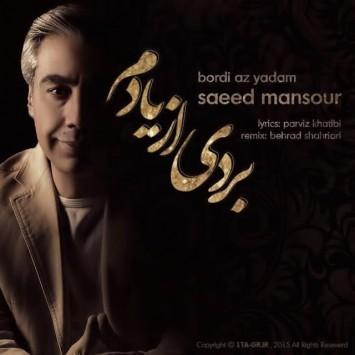 دانلود آهنگ جدید سعید منصور با عنوان بردی از یادم