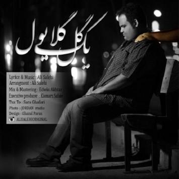 دانلود آهنگ یک گل گلایولص از علی صالحی با لینک مستقیم (sakhamusic.ir)26Ali Salehi Yek Gole Gelayolsakhamusic.ir 355x355