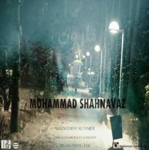 sakha2 298x300 - دانلود آهنگ بارون از محمد شهنواز با لینک مستقیم