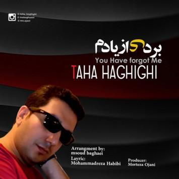 Taha Haghighi - Bordi Az Yadam