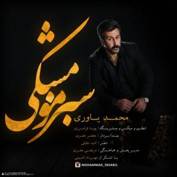 (sakhamusic.ir)22Mohammad Yavari   Sabze Moo Meshki.mp3sakhamusic.ir 355x355 - دانلود آهنگ سبز مو مشکی از محمد یاوری با لینک مستقیم