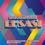 دانلود آهنگ احساسی از محسن میدانی با لینک مستقیم