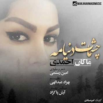 Makan-Ahmadi_Cheshmat-Donyameh