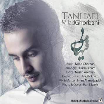 Milad-Ghorbani-Tanhaei