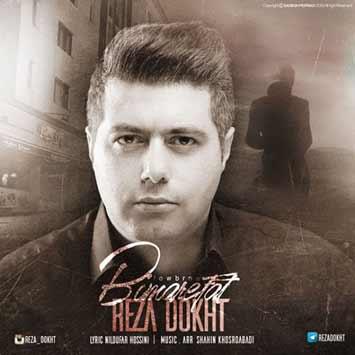 Reza-Dokht-Bi-Marefat