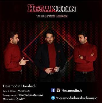 Hesamodin-Horabadi-Toro-Peydat-Kardam