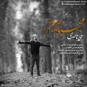 MohammadNaseri