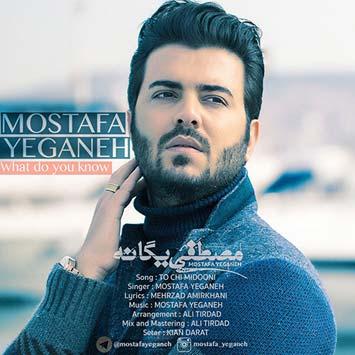 دانلود آهنگ جدید مصطفی یگانه به نام تو چی میدونی Mostafa Yeganeh To Chi Midooni 1