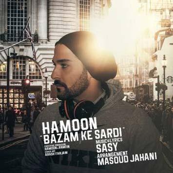 دانلود آهنگ جدید هامون به نام بازم که سردی Hamoon Called Bazam Ke Sardi