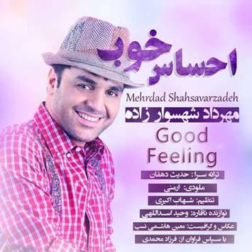 Mehrdad-Shahsavarzadeh-Called-Ehsase-Khoob