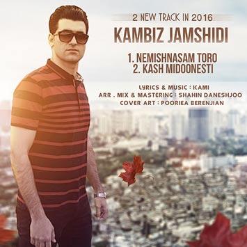 دانلود آهنگ جدید کامبیز جمشیدی به نام نمیشناسم تورو Kambiz Jamshidi Nemishnasam Toro