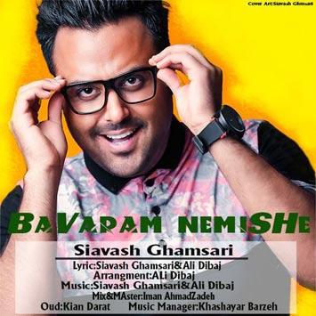 Siavash-Ghamsari-Called-Bavaram-Nemishe
