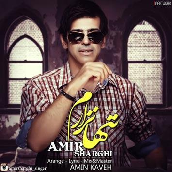 دانلود آهنگ جدید امیر شرقی به نام تنها نزارم AMIR SHARGHI Called TANHA NAZARAM