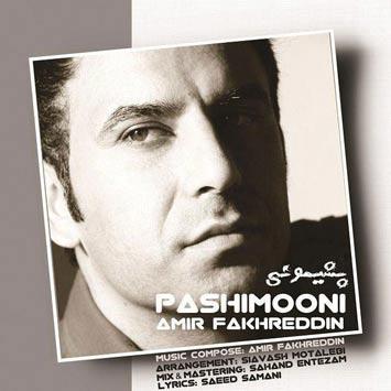 Amir-Fakhreddin---Pashimooni