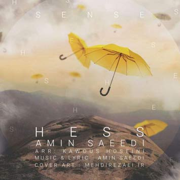 Amin-Saeedi-Called-Hess
