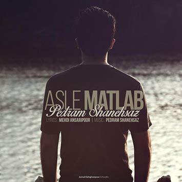 دانلود آهنگ جدید پدرام شانه ساز به نام اصل مطلب Pedram Shanehsaz Asle Matlab