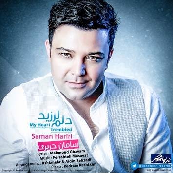 Saman-Hariri---Delam-Larzid