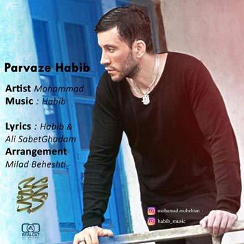 دانلود آهنگ جدید محمد محبیان به نام پرواز حبیب Mohammad Mohebian Parvaze Habib