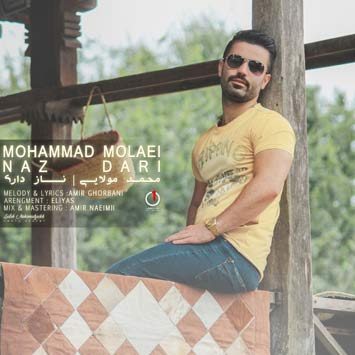 Mohammad-Molaei---Naz-Dari