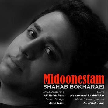 Shahab-Bokharaei---Midoonestam