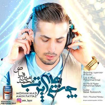 mohammad-amin-fayyaz
