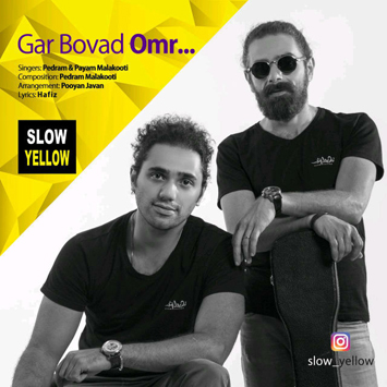 slow-yellow-band-gar-bovad-omr