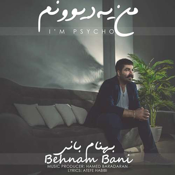 behnam-bani-called-man-ye-divoonam