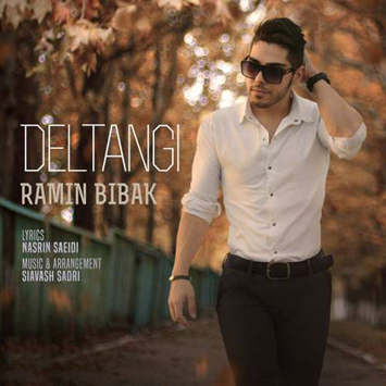 ramin-bibak-called-deltangi