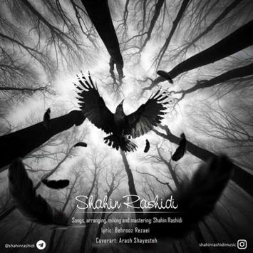 دانلود آهنگ جدید شاهین رشیدی به نام کلاغ Shahin Rashidi Called Kalagh
