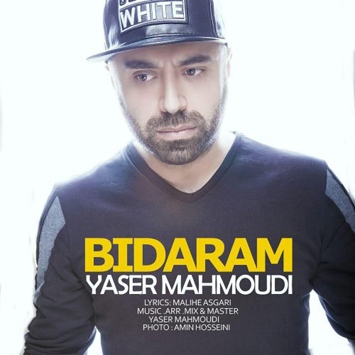 yaser-mahmoudi-called-bidaram