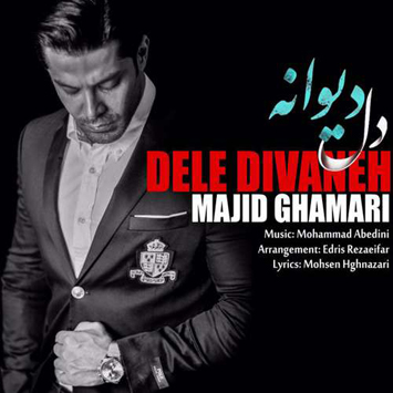majid-ghamari-called-dele-divaneh