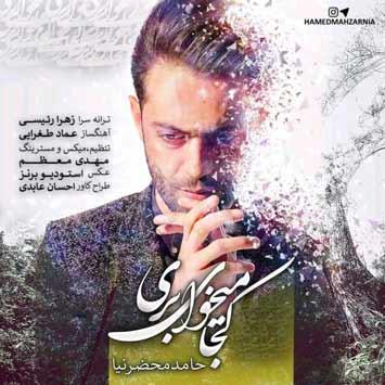 دانلود آهنگ جدید حامد محضرنیا به نام کجا میخوای بری Hamed Mahzarnia Koja Mikhay Beri