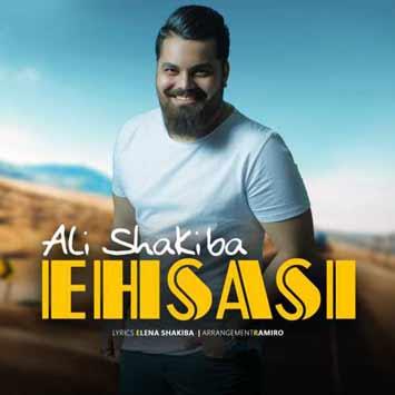 دانلود آهنگ جدید علی شکیبا به نام احساسی