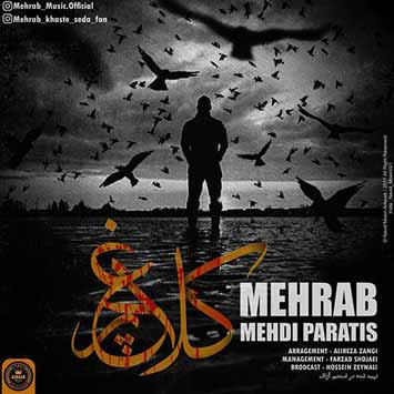 Mehrab Mehdi Paratis Called Kalagh Par - دانلود آهنگ جدید مهراب به نام کلاغ پر