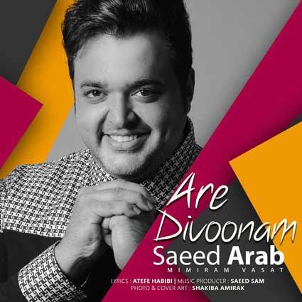 آهنگ سعید عرب آره دیوونم